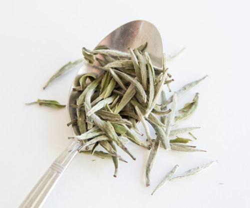 Silver Needle with Spoon Tea Circle