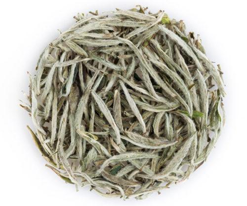 silver needle Tea Circle